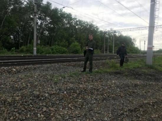 В Челябинской области пропавшего семилетнего мальчика нашли мертвым