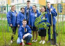 Югра участвует в акции «Сад Памяти»