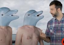 Ургант сравнил искупавшегося в Сочи Лукашенко с усатым моржом