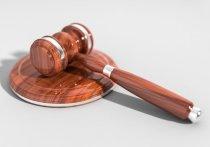 В Челябинске осудили двух мужчин, укравших у