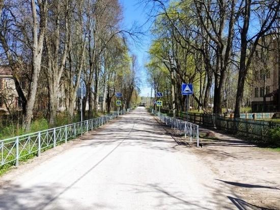 22 пешеходных перехода у школ обустроили в Псковской области