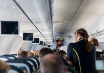 Пьяную компанию сняли с рейса из Камчатки в Новосибирск полицейские