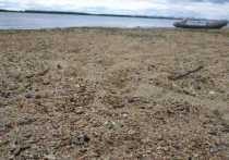 В Хабаровском крае не прогнозируют опасных отметок воды в июне