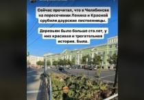 Губернатора Алексея Текслера возмутила вырубка даурских лиственниц в центре Челябинска