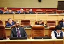 Депутаты ЗС призвали работать с детьми, а не кивать на железные двери