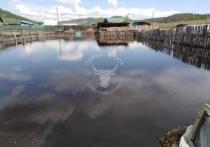 Гурулев назвал число пострадавших от паводка забайкальцев