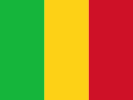 Африканский союз приостановил членство Мали из-за военного переворота