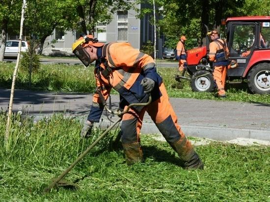 В Кирове газоны пообещали привести в порядок ко Дню города