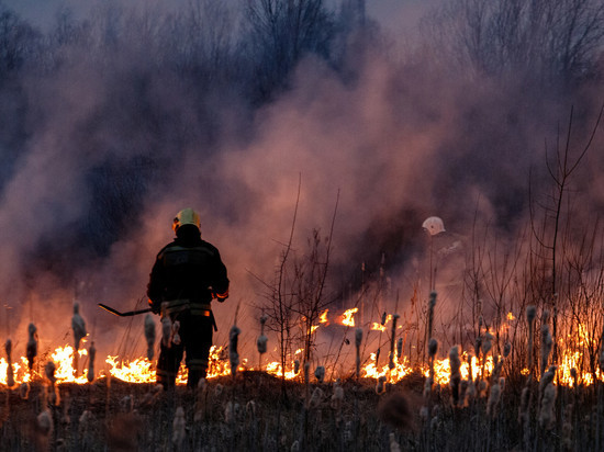 О высокой пожарной опасности предупреждают жителей Псковской области