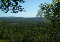В Хабаровском крае госинспектор нашел в лесу заблудившегося пенсионера