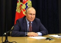 Владимир Путин : «Предварительное голосование служит для постоянного развития партии»