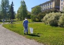 Парки и скверы Петрозаводска начали обрабатывать от клещей