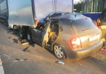 На трассе Кострома-Шарья-Киров-Пермь вчера произошло ДТП со смертельным исходом