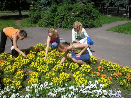 В Нижегородской области летом будут работать порядка 400 подростковых бригад