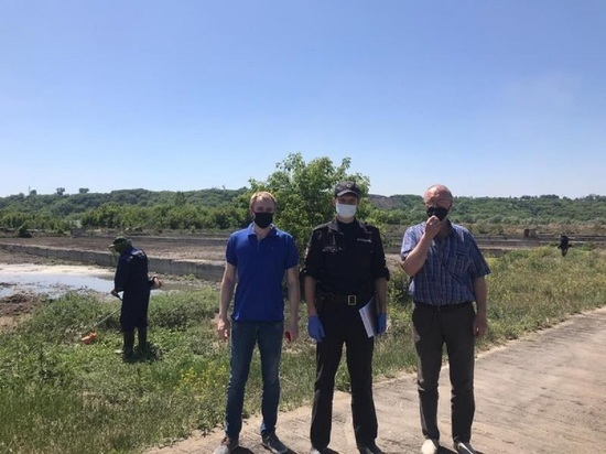 В Барнауле полицейские уничтожили два гектара дикорастущей конопли