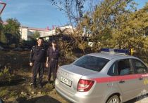 В Павловске сотрудники Росгвардии эвакуировали детей из детского дома, которому угрожал пожар, сообщает пресс-центр регионального ведомства.