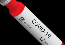 4 июня: в Германии 3.165 новых случаев заражения Covid-19, умерших за сутки - 86