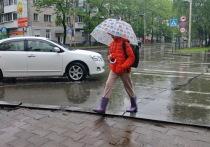 Прогноз  погоды в Хабаровске на 5 июня 2021 года: опять дожди