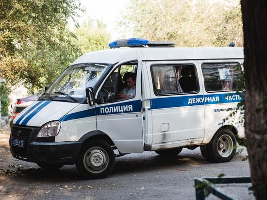 Жителя Калмыкии подозревают в краже телефона