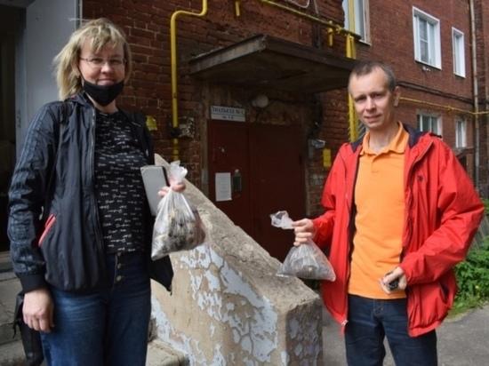 В Иванове всем желающим бесплатно раздали луковицы тюльпанов
