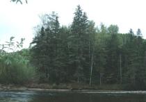Сплав по реке Катэн, где погибла женщина, организовали любители