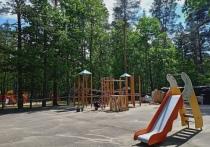 Губернатор осмотрел новую детскую площадку в Пушкинских Горах