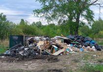 На окраине Омска не вывозят мусор, который может и загореться