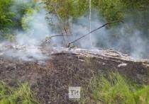 Сегодня вновь обнаружили тлеющие бревна на Особо охраняемой природной территории
