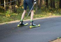 Администрация Валдайского района поддержала проложить лыжероллерную трассу в районе села Зимогорье. Об этом сообщили в пресс-службе администрации.
