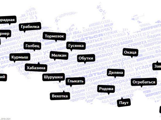 Трезвак, барабаться, дикошарый: какие характерные слова используют в Удмуртии