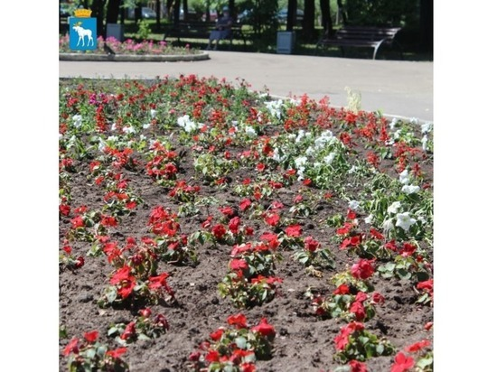 В йошкар-олинском сквере Наты Бабушкиной появились цветы