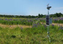 Собственная агрометеостанция, которая поможет работникам следить за редкими растениями, появилась в Ботаническом саду МГУ «Аптекарский огород»