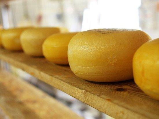 Запрещенный сыр из Германии уничтожили в Кемерове