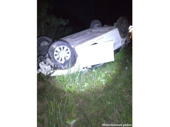 В Марий Эл водитель «Шевроле» пострадал при наезде на лося