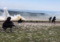 В МИД России заявили о деструктивном влиянии США на Украину