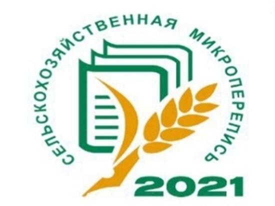 Крымстат заинтересован в дополнительных сотрудниках на время переписи
