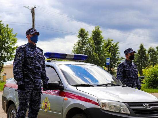 Сотрудники Росгвардии задержали ограбившего женщину йошкаролинца