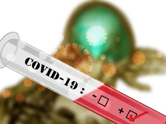 За неделю коронавирус подхватил 631 житель Башкирии, а выздоровели 718