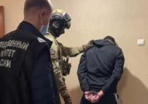 Подозреваемого в убийстве супруги главного врача больницы Искитима Новосибирской области Людмилы Кайгородовой задержали