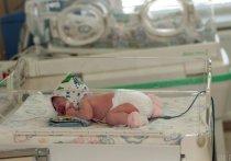 В Томской области умерло 20 малышей в возрасте до года с начала 2021 года
