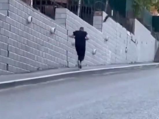 Вороны нападают на людей во Владивостоке
