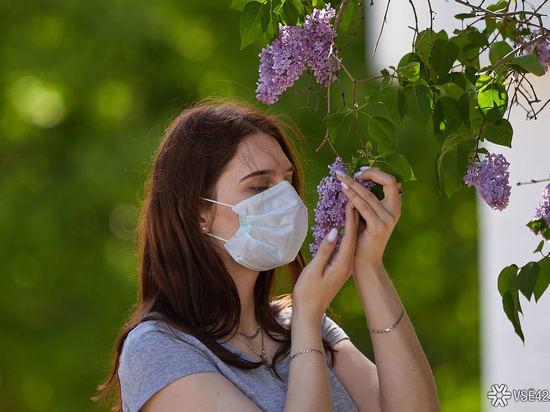 66 случаев коронавируса выявили в Кузбассе за прошедшие сутки, трое умерли