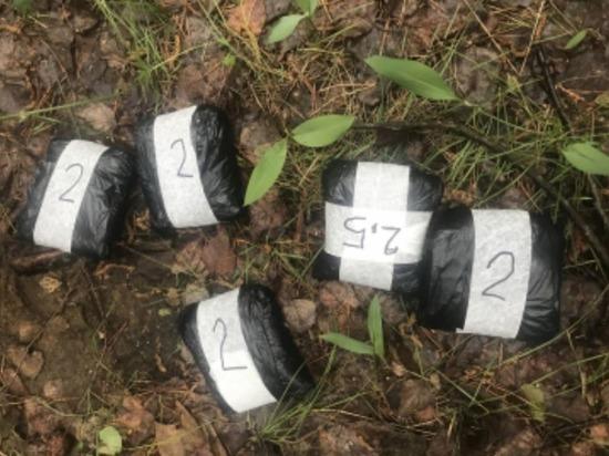 В Марий Эл задержан наркоперевозчик с 3 кг мефедрона