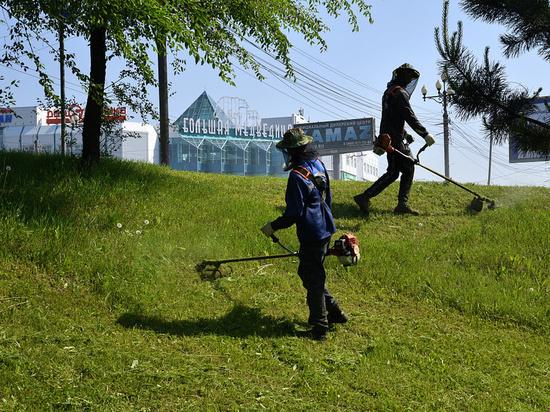 В Хабаровске выкосят больше 250 гектаров травы