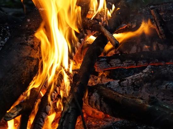 В Марий Эл сохраняется высокая опасность лесных пожаров