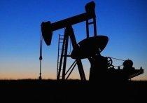 В Тюмени обсудили перспективы развития нефтегазового комплекса Западной Сибири