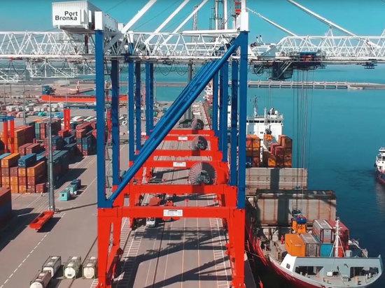 Порт «Бронка» под Петербургом могут полностью национализировать