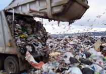 В Казахстане построят шесть мусоросжигающих заводов