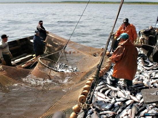 У заполярных прибрежников есть шанс получить разрешение на первичную обработку рыбы на судах