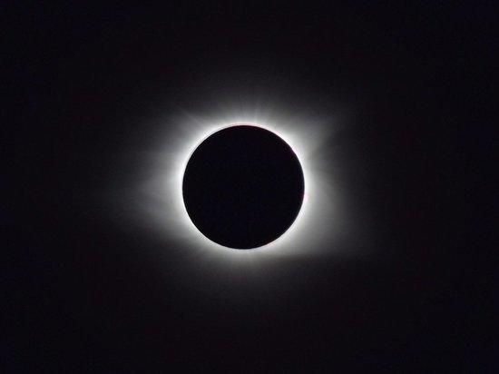 Астроном-любитель приглашает псковичей посмотреть на солнечное затмение